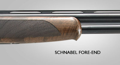 Schnabel-Fore-End