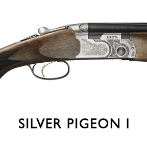 1_SILVER-PIGEON-I_2019