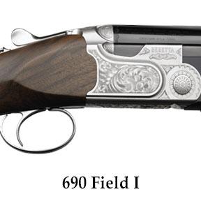690-Field-I